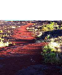 Private Volcano All Day - Gecko Big Island Tours