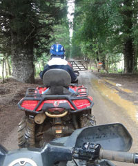 ATV And Off-Road Tours on Kauai