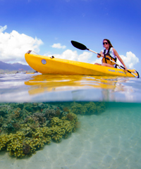 Downwinder Kayak Tour - Molokai Outdoors