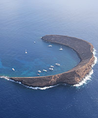 Molokini Snorkeling Tours on Maui